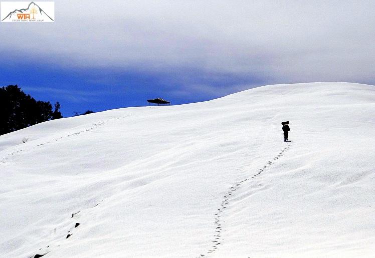12 path to barnala top