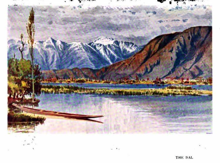 dal 1907